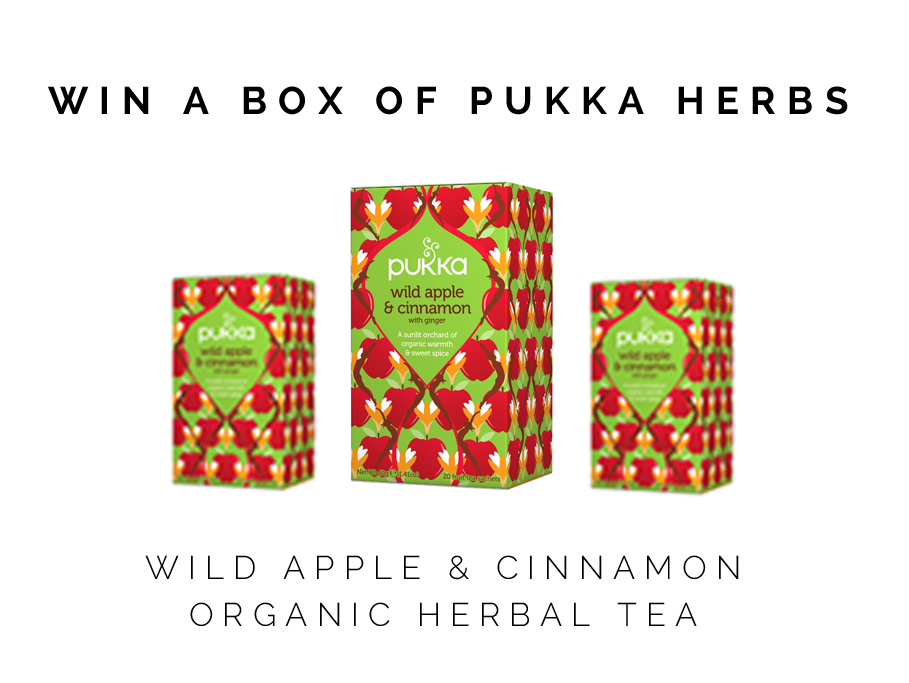 healthy-starbucks-caramel-apple-spice-recipe-and-pukka-tea-giveaway-5